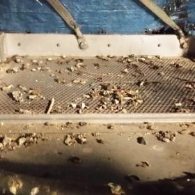 élimination de déjections animales2 280x280 Décontamination déquipements techniques